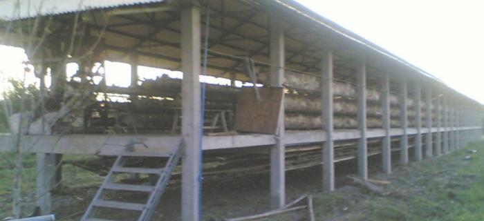 Poultry house construction plans - House plans